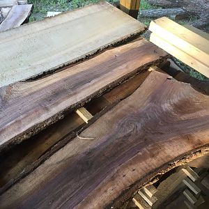Walnut, Locust, Poplar, Oak and Hickory Slabs