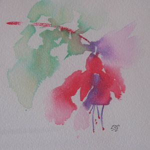 Loose Watercolor of summer fuchsia