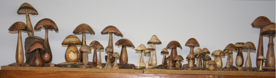 1 mushrooms - 1.jpg